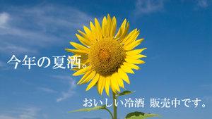 2011_midsummer_2